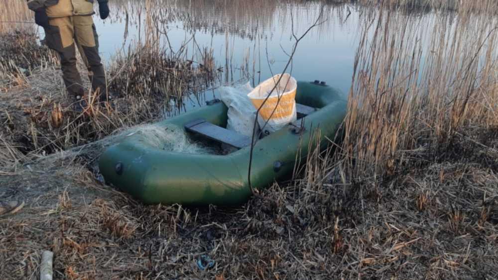 В Брянской области на браконьеров завели 17 уголовных дел