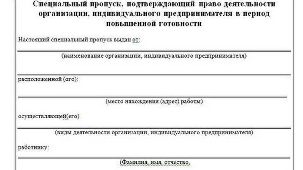 Власти Брянска показали образец пропуска на время самоизоляции