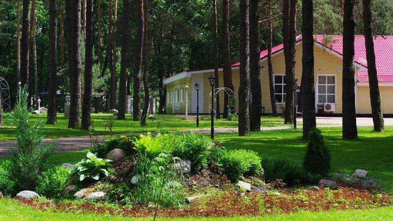 В доме отдыха «Сосновый бор» на время пандемии поселились 30 медиков