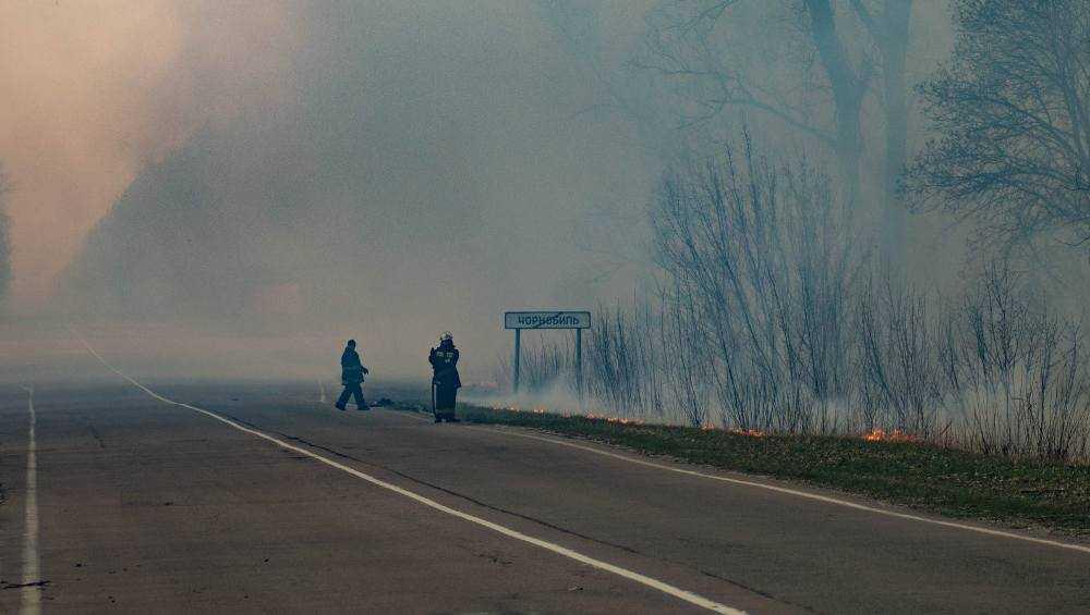 Брянский глава Богомаз пообещал справиться с чернобыльским пожаром