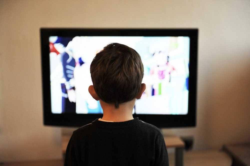 Брянских школьников подготовят к экзаменам с помощью телевидения