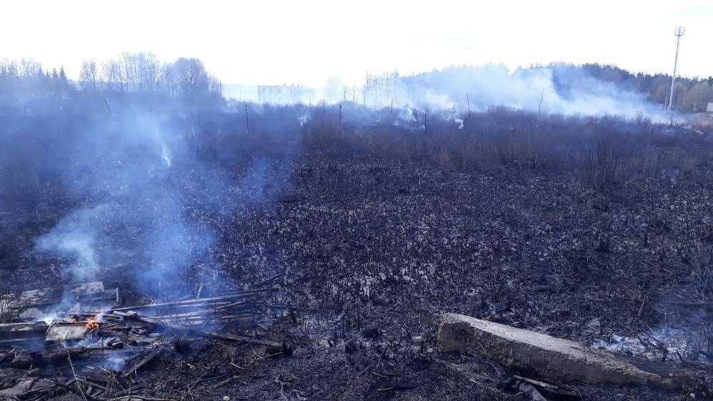 В Фокинском районе Брянска потушили горевшую траву