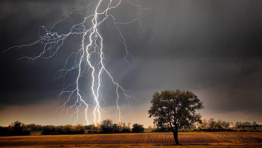 В Брянской области 19 августа прогремят грозы