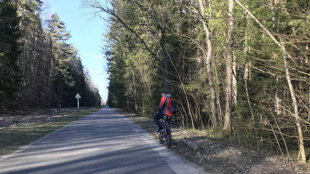 На брянские дороги выехали презревшие опасность велосипедисты