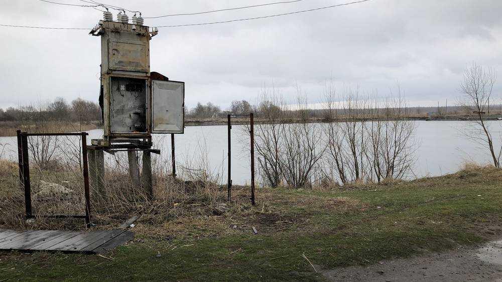 В Брянской области начнут разводить форель