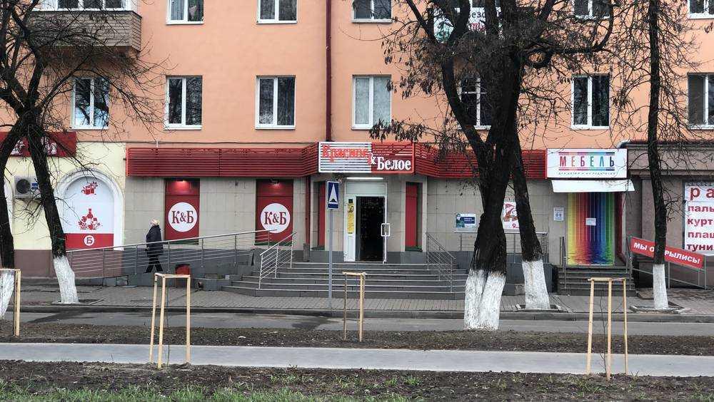 В Брянске вдоль обновлённого Московского проспекта посадили деревья