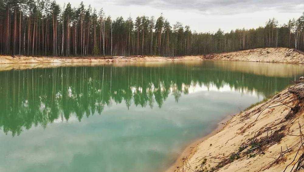 Брянцы ухитрились загадить лесное озеро в укромном месте