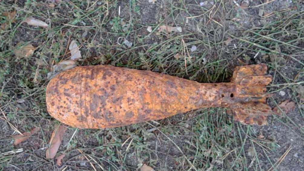 Под Брянском в лесу обезвредили мину времён войны