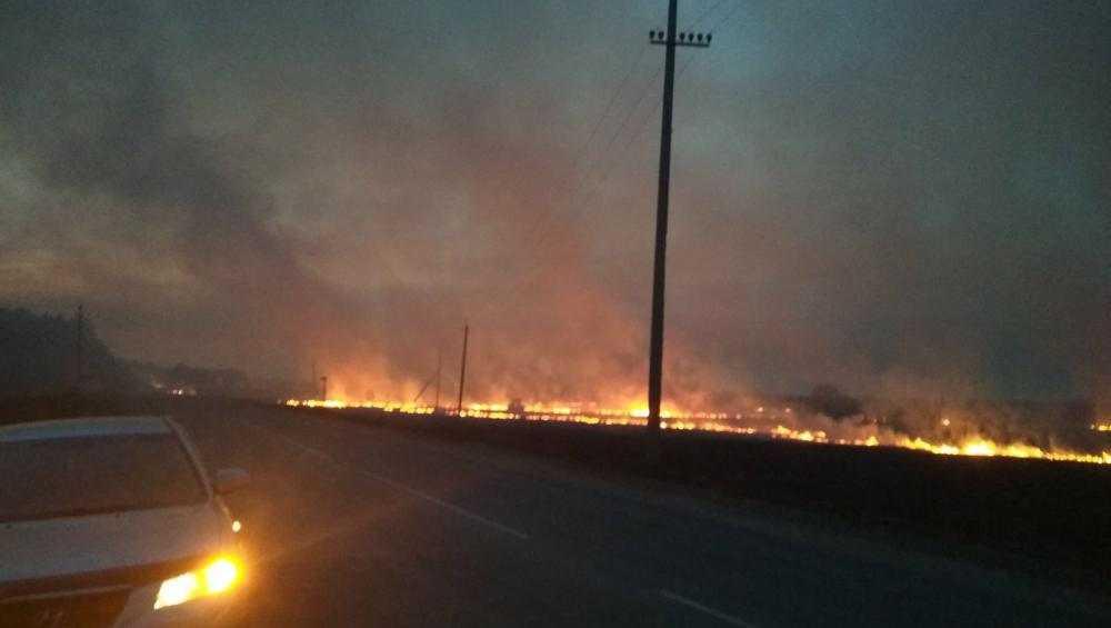 В Брянской области за день сухая трава загоралась более тысячи раз