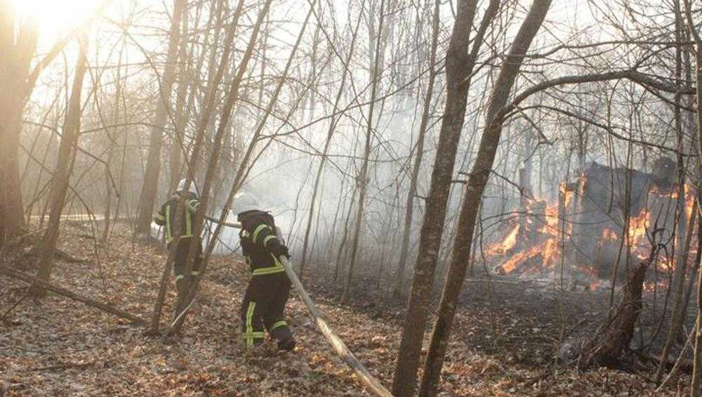 Брянцы вновь забеспокоились из-за пожаров возле Чернобыльской АЭС