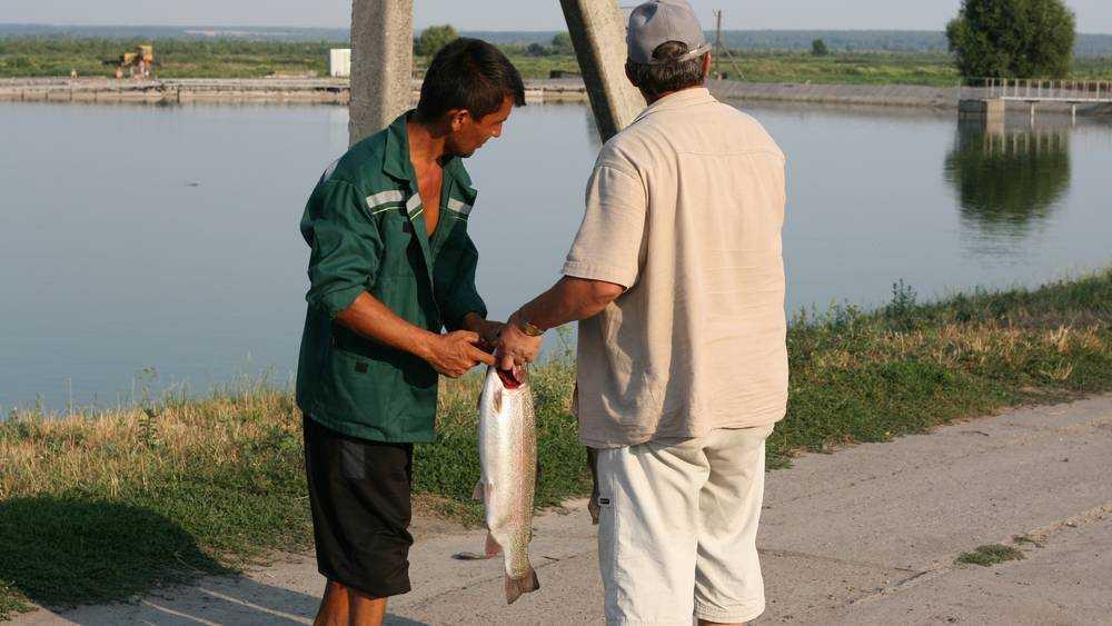 В Локте начали восстанавливать легендарный рыбопитомник