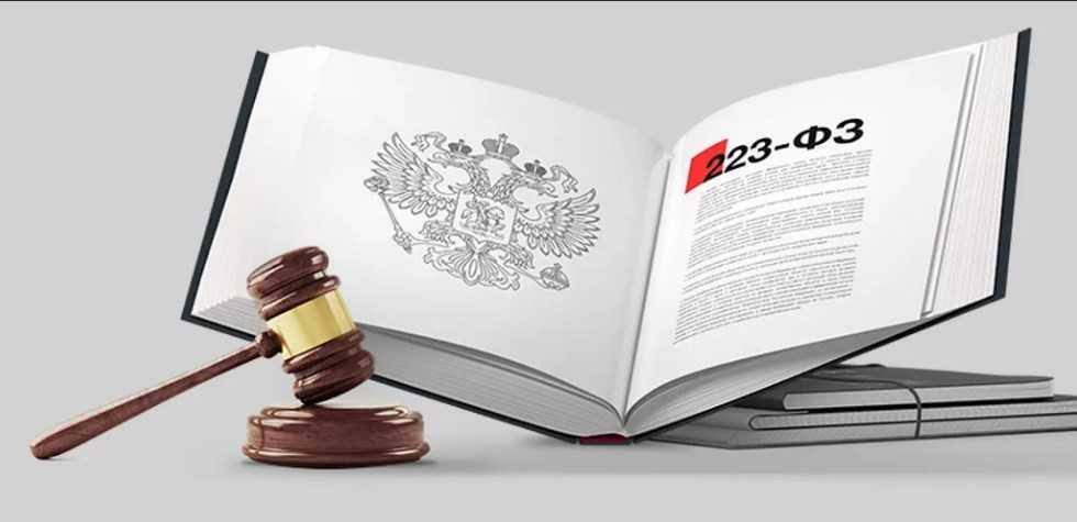 Брянская область — один из лидеров по закупкам у МСП