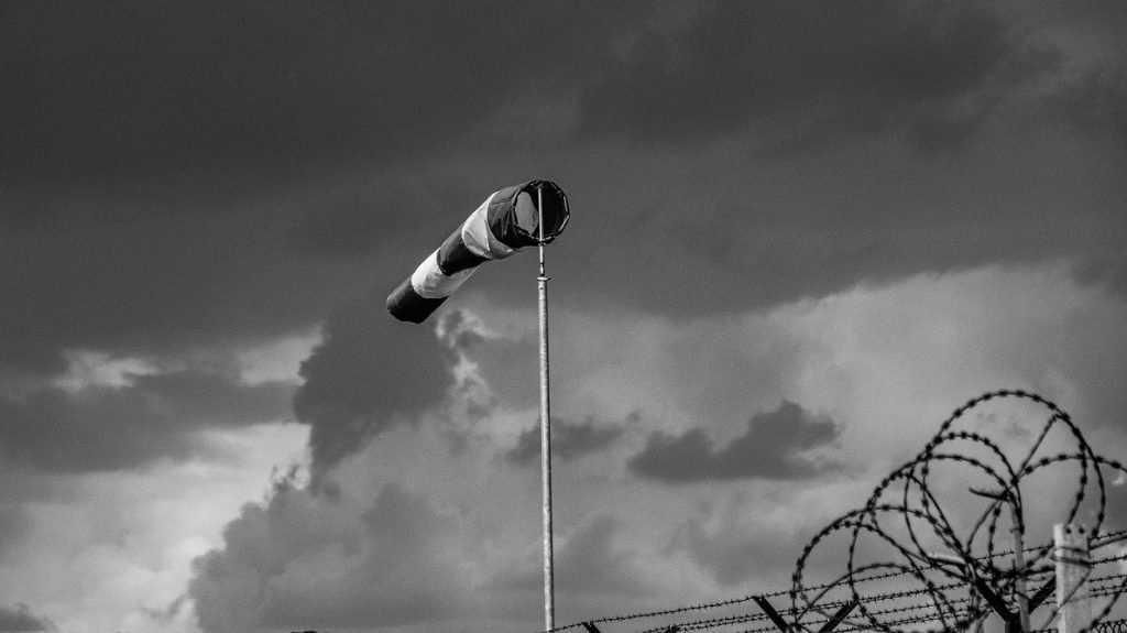 Спасатели предупредили брянцев о сильном ветре