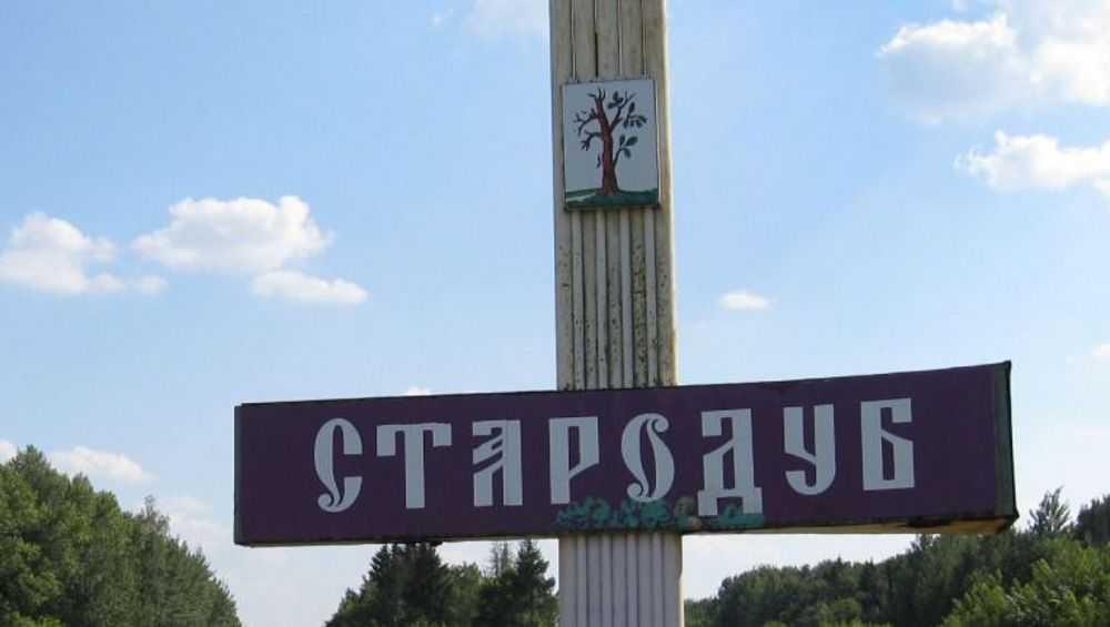 Стародуб объединится с поселениями и станет муниципальным округом