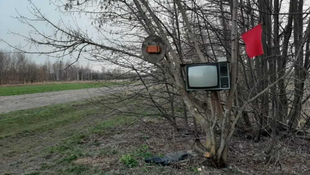 Жителей Новозыбкова изумил говорящий телевизор на дереве