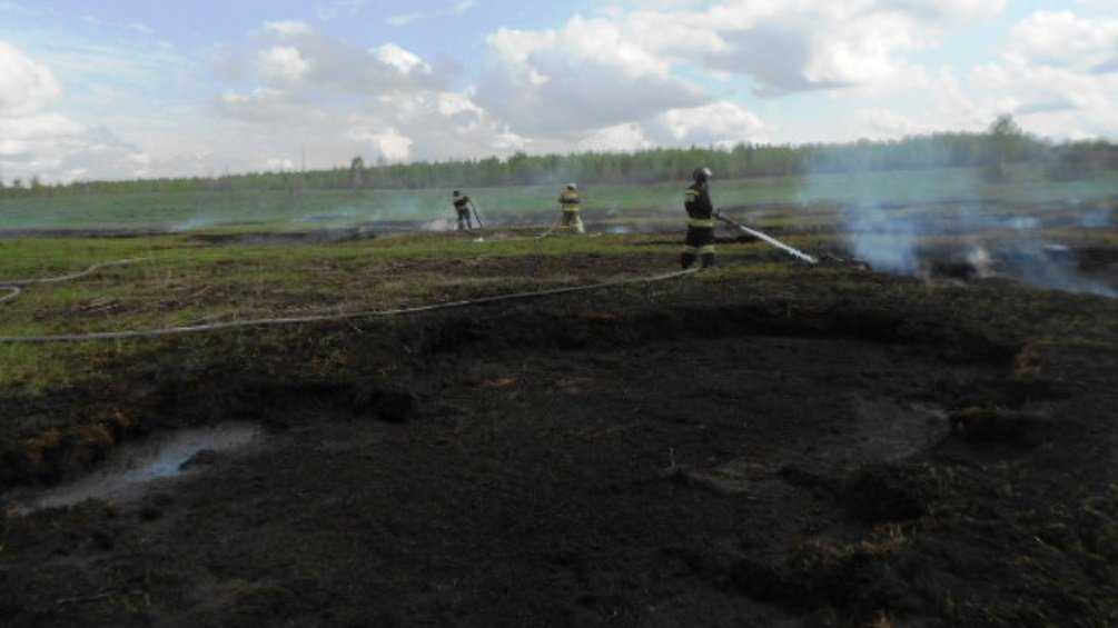 Под Севском восемь человек потушили торфяной пожар