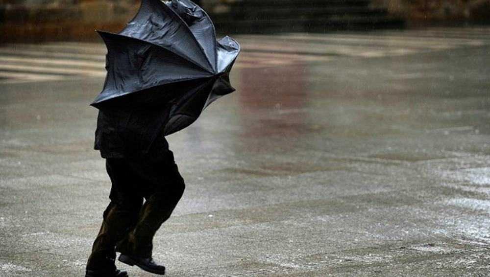 В Брянске до 21.00 будет желтый уровень погодной опасности