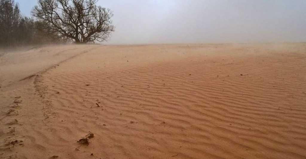 На Брянскую область начала грозно надвигаться пустыня