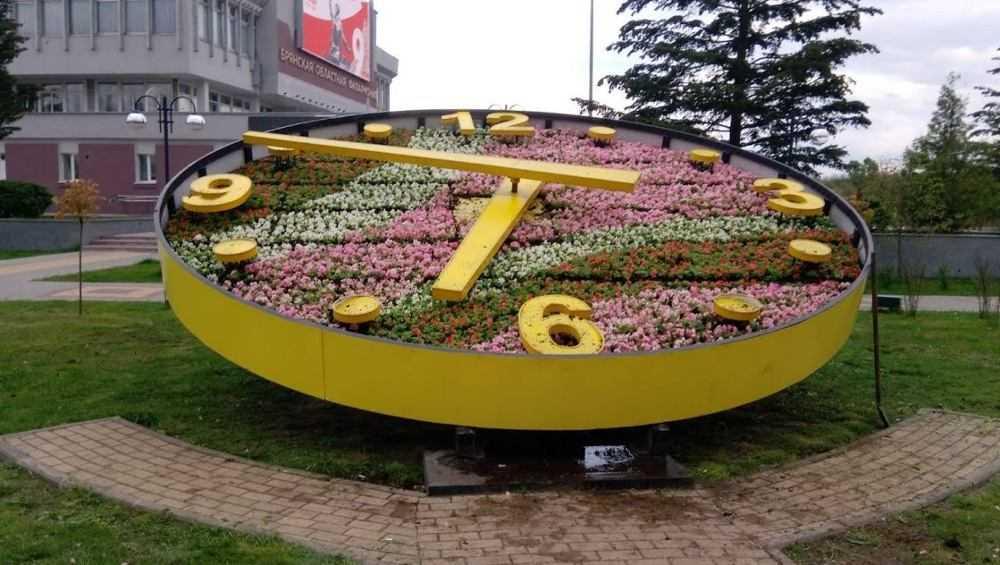 В Брянске на набережной обновили цветочные часы