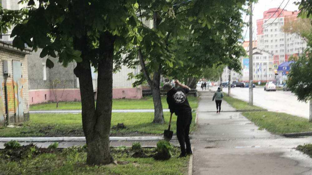 Самоизоляция подвигла жителей Брянска на благоустройство дворов