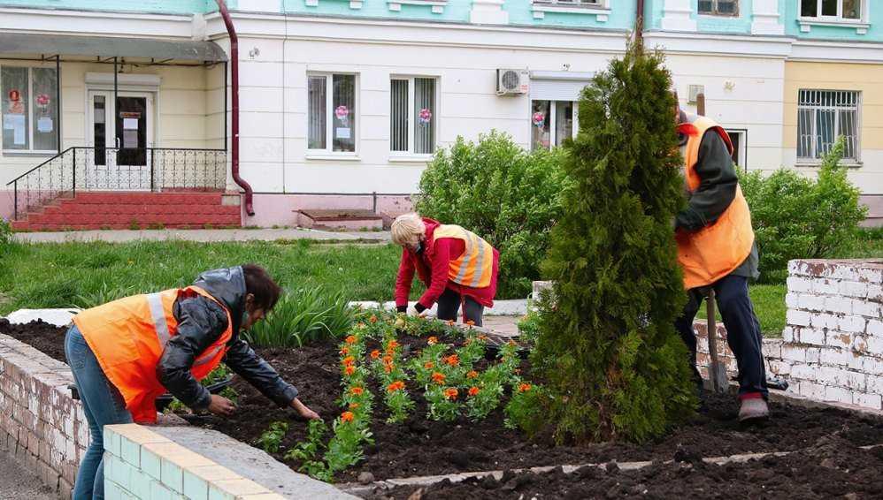 На улицах Брянска убрали 3000 тонны песка и высадили 26000 цветов