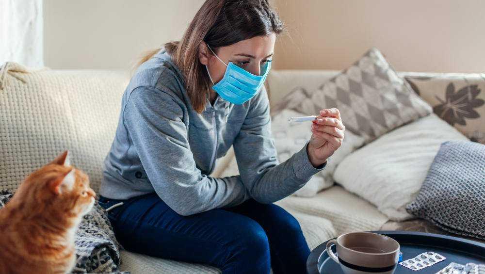 В 20 районах Брянской области выявили новые случаи коронавируса