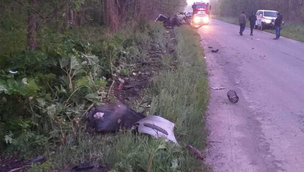 В Почепском районе произошла дорожная трагедия