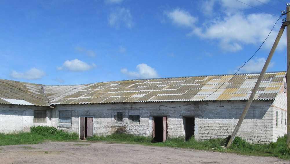 В Гордеевском районе неизвестный вор похитил восемь телят