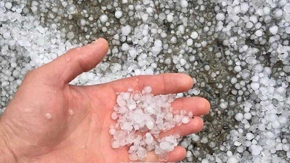 МЧС предупредило о грозе с градом в Брянской области 14 мая