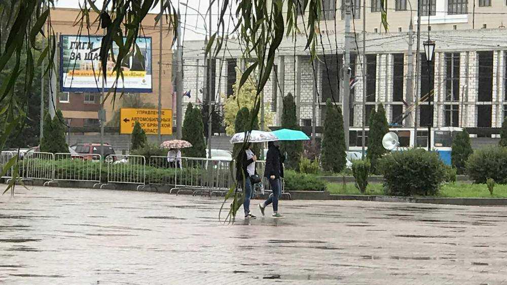 Воскресенье в Брянске ожидается дождливым
