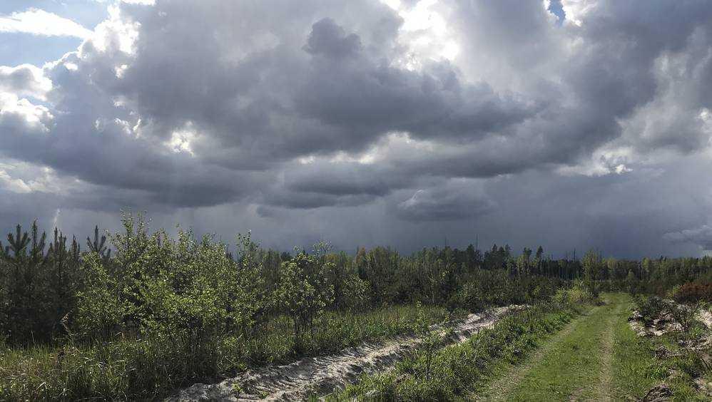 В воскресенье в Брянске местами пройдет дождь