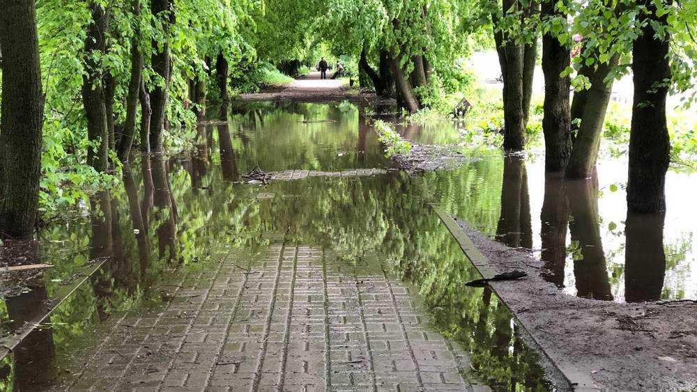 В Брянске после ливня тротуары стали непроходимыми