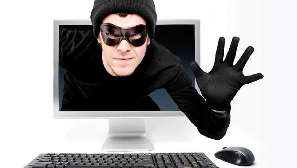 В Брянске интернет стал криминальной сферой