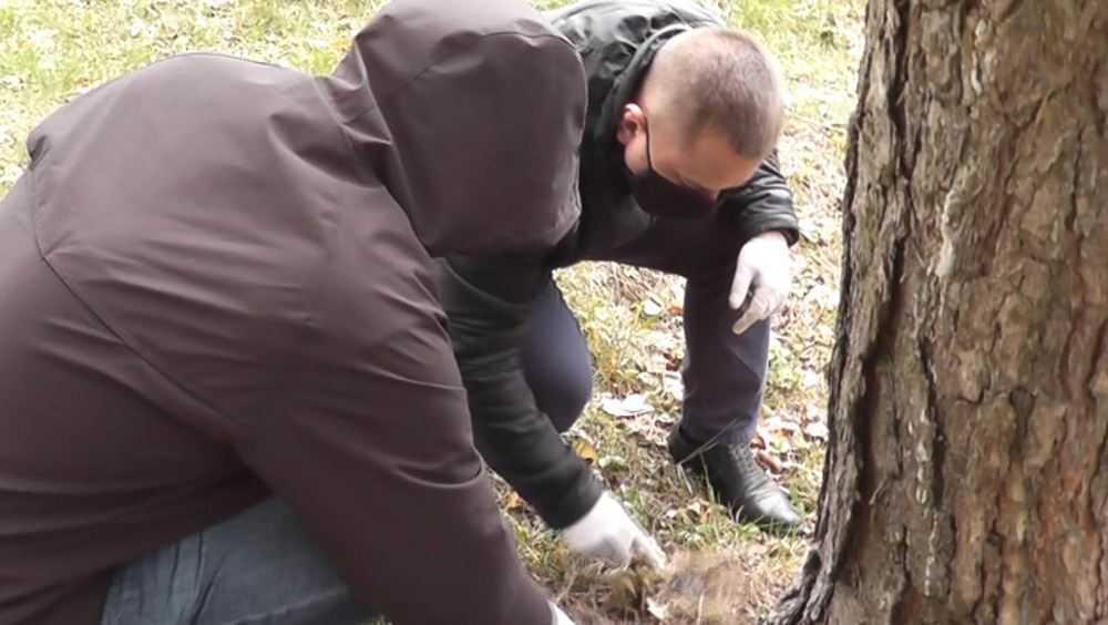 Брянская полиция задержала с поличным двух наркоторговцев
