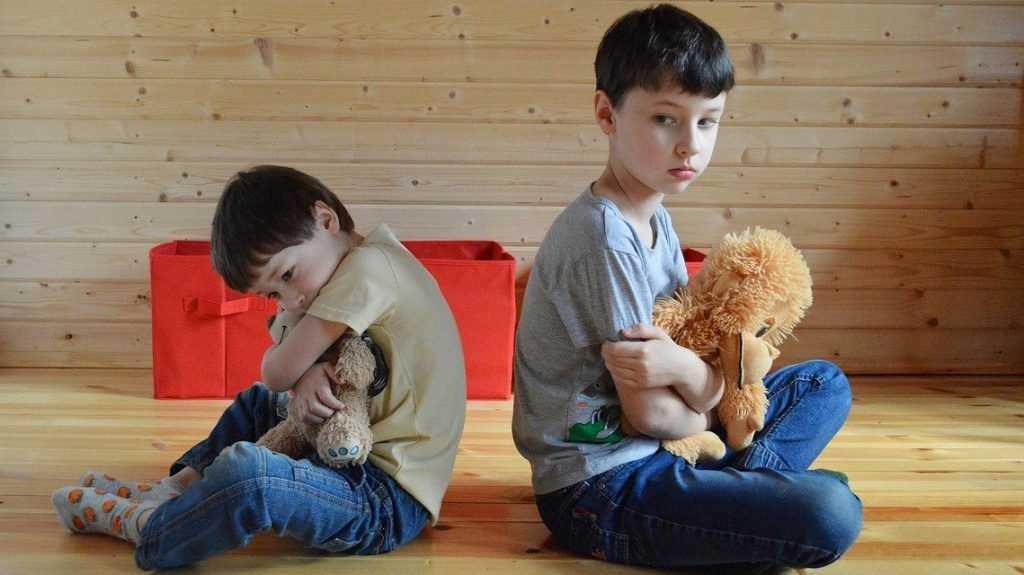В Брянской области из-за пандемии приостановили работу детских центров
