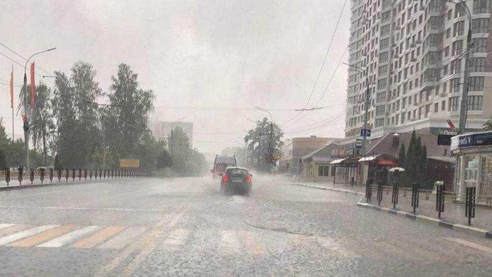 Брянские спасатели предупредили о сильных дождях с грозами и градом