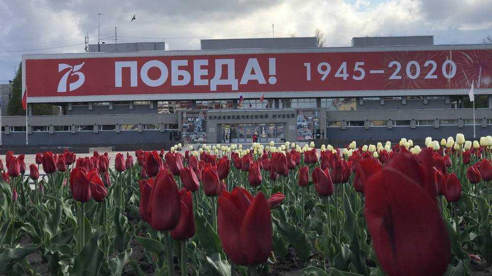 Телеканал ОТР рассказал о партизанском движении на Брянщине