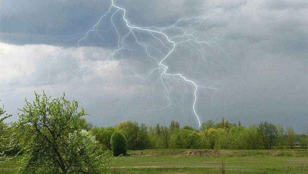 В Брянске во вторник обещали летнюю погоду: тепло и дождь с грозой