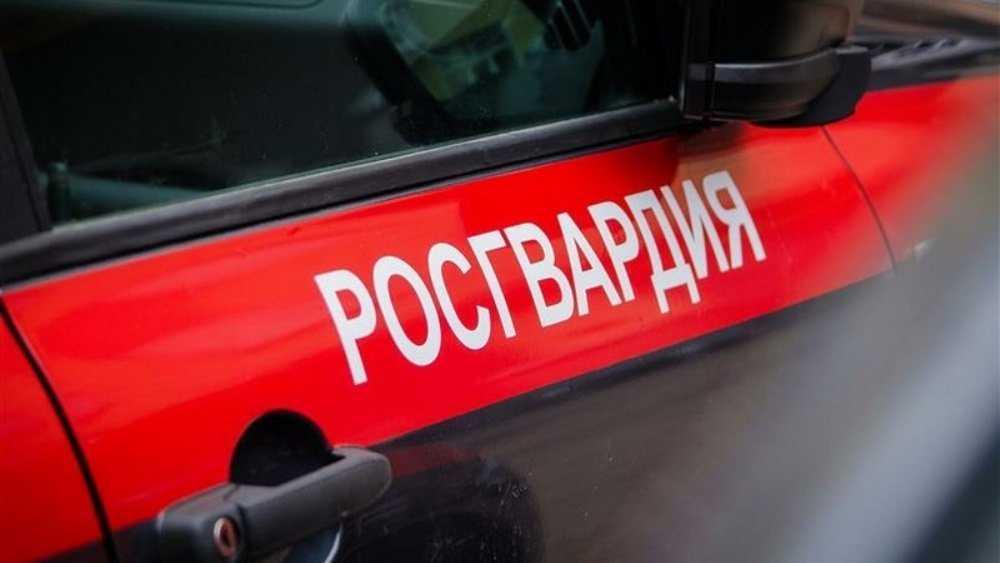 В Брянске росгвардейцы задержали вора, дважды обокравшего один магазин