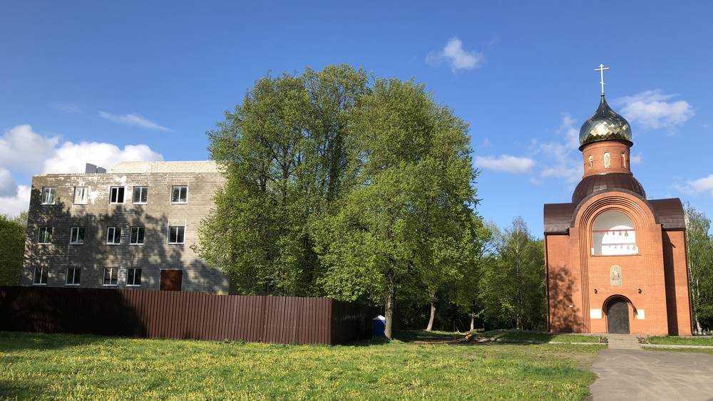 В брянском парке «Соловьи» стали спешно достраивать загадочное здание