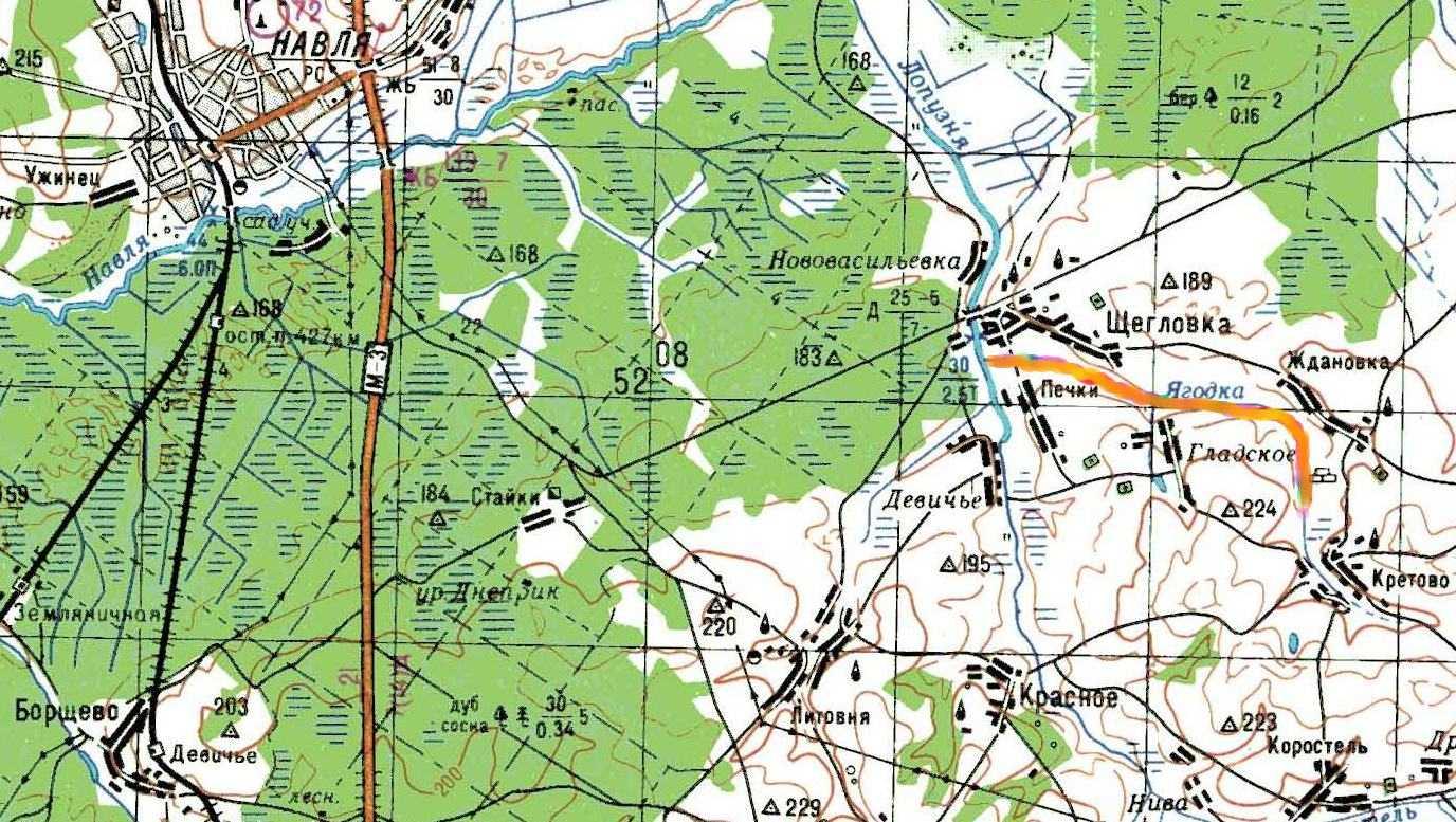 В Брянской области над рекой Ягодкой нависла опасность