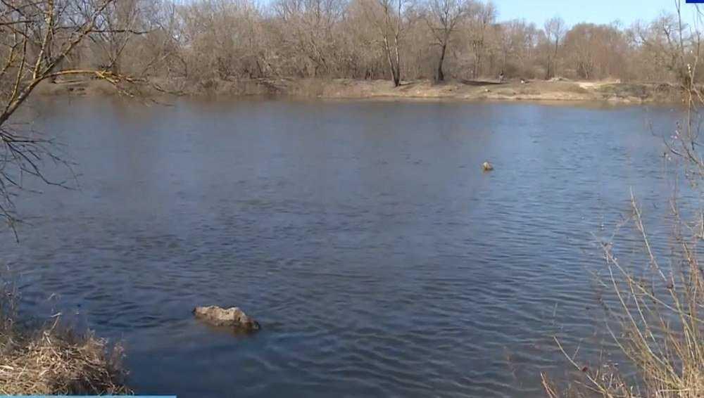 Суд обязал выгоничских чиновников поднять затонувший в Десне мост