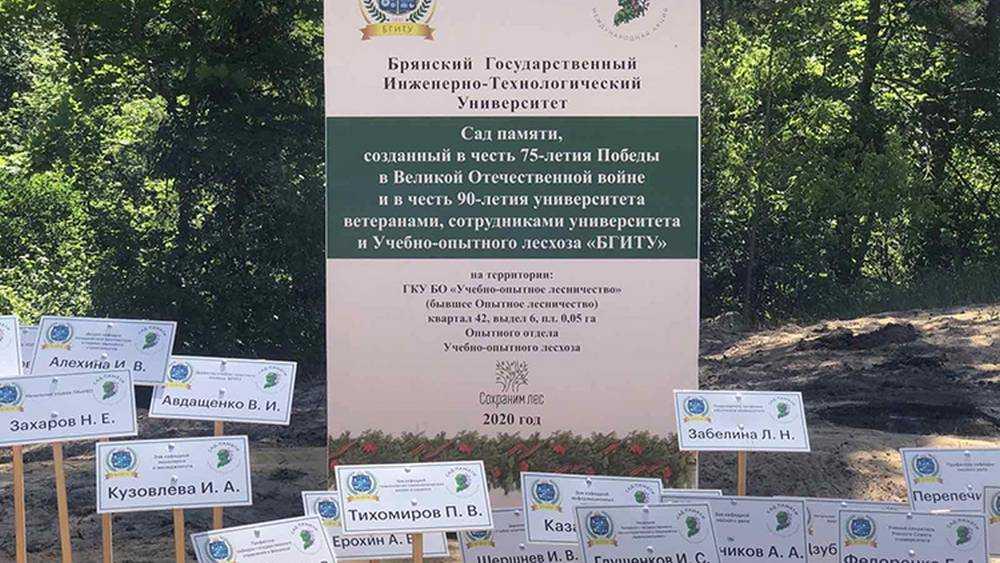 В брянском «Саду памяти» вырастут яблони