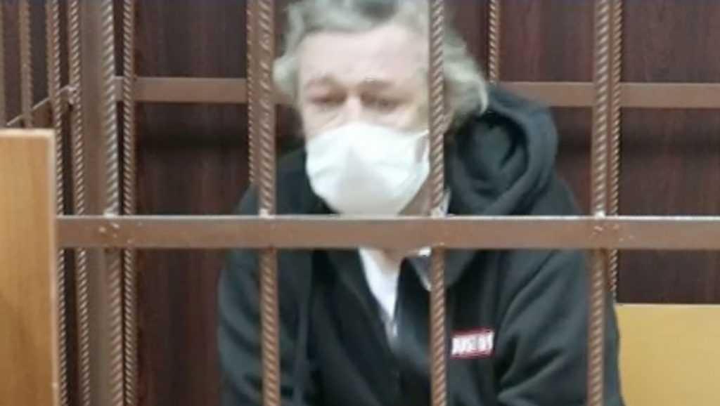 Ефремов пожаловался брянской журналистке на подставившего его адвоката
