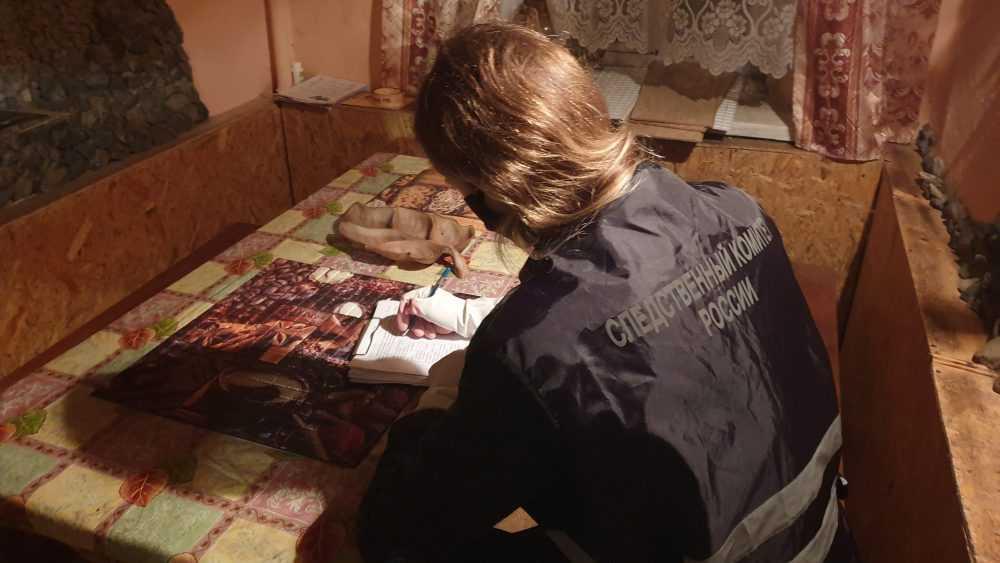 Сведения об истязаниях 7-летней брянской девочки проверят следователи