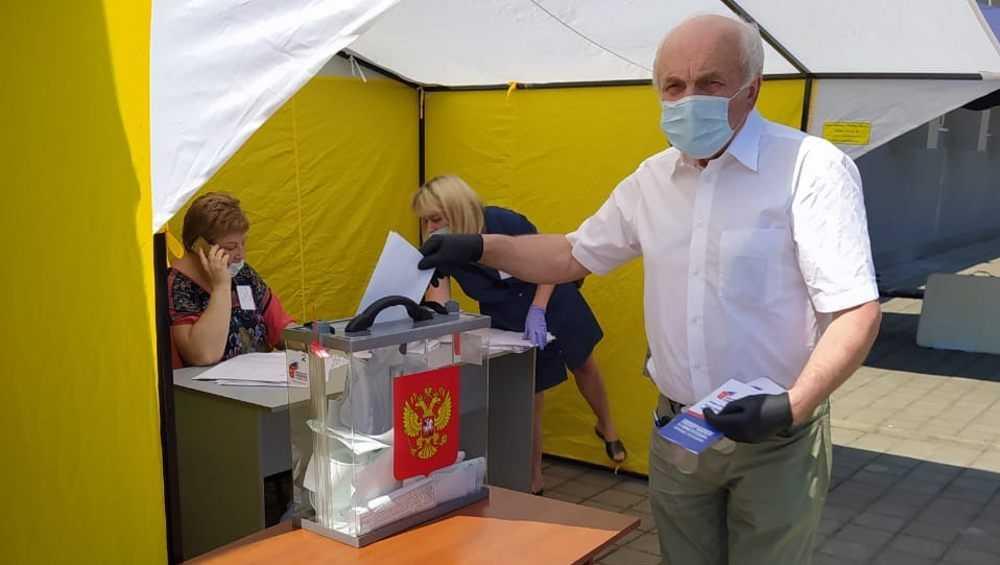 Брянский писатель Алексеев проголосовал по поправкам в Конституцию
