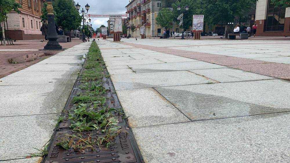 В Брянске на бульваре Гагарина ливневка превратилась в веселый газон