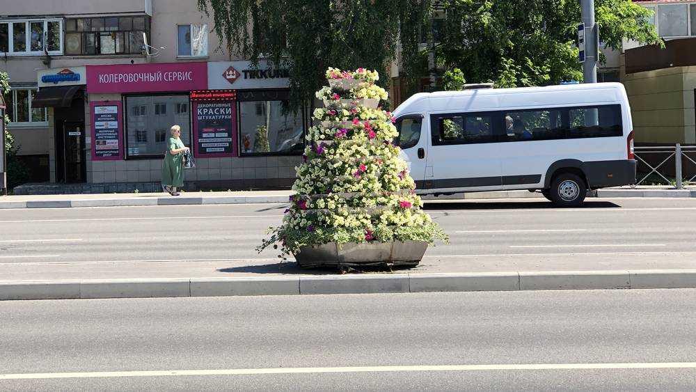 В Брянске дорогу на Авиационной украсили пирамидками из цветов