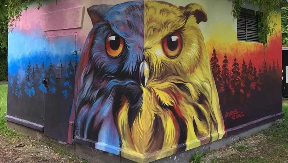 Брянцам предложили оценить граффити о Дне России