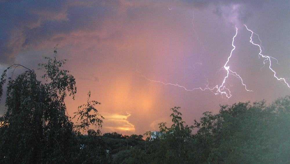 В Брянске в воскресенье обещали 30 градусов тепла и дождь с грозой